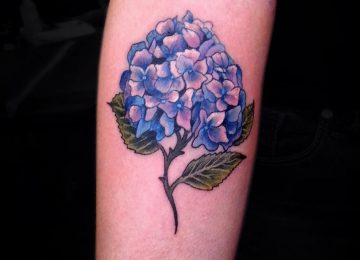 20 Splendid Hydrangea Tattoo Designs