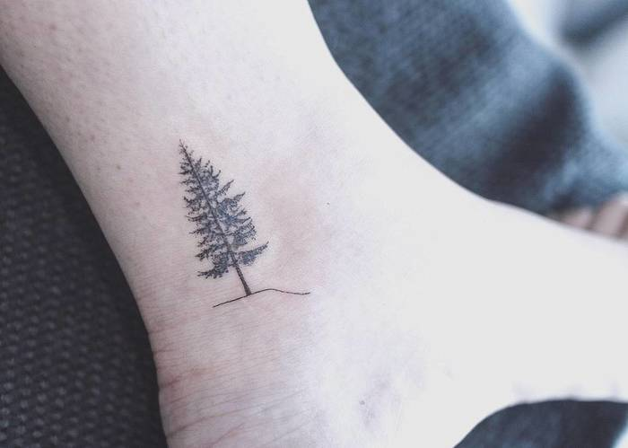 Small Tree Tattoo on Ankle by baam.kr