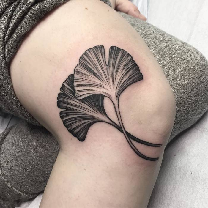 Two Ginkgo Leaves on Knee by terrygrow