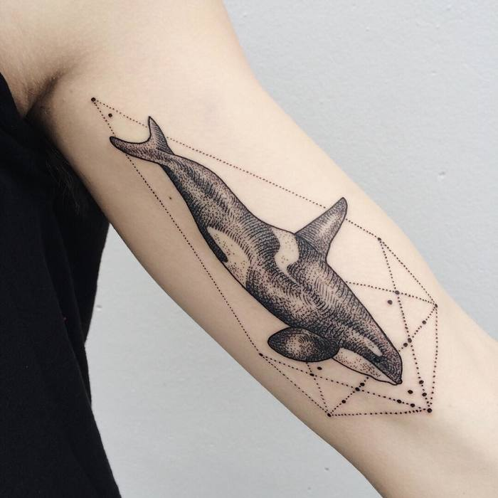 Orca Whale on Inner Bicep by freeorgy