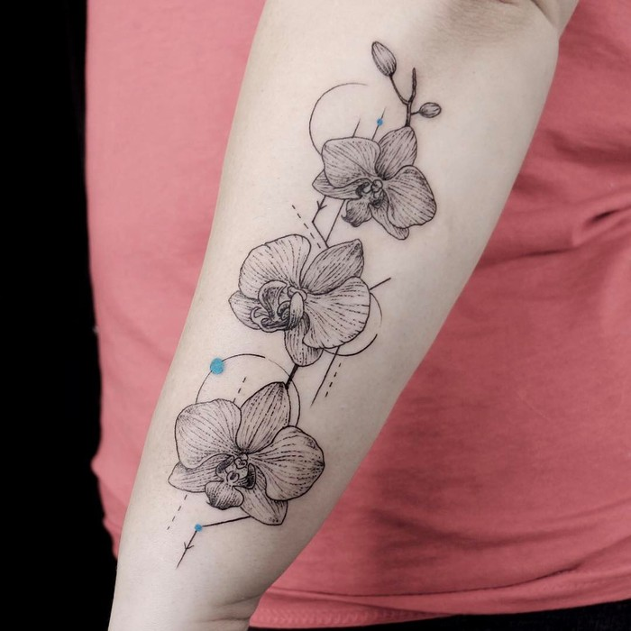 Linework Orchids by emrahozhan