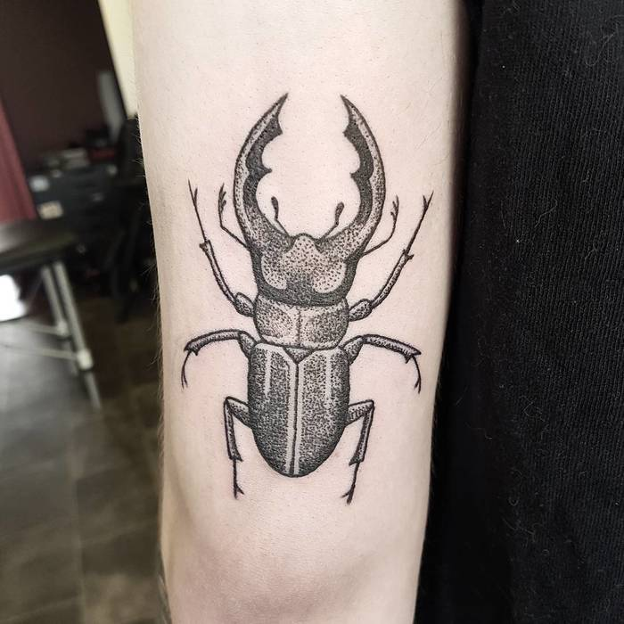 Dotwork Stag Beetle Tattoo by demi_tattoo