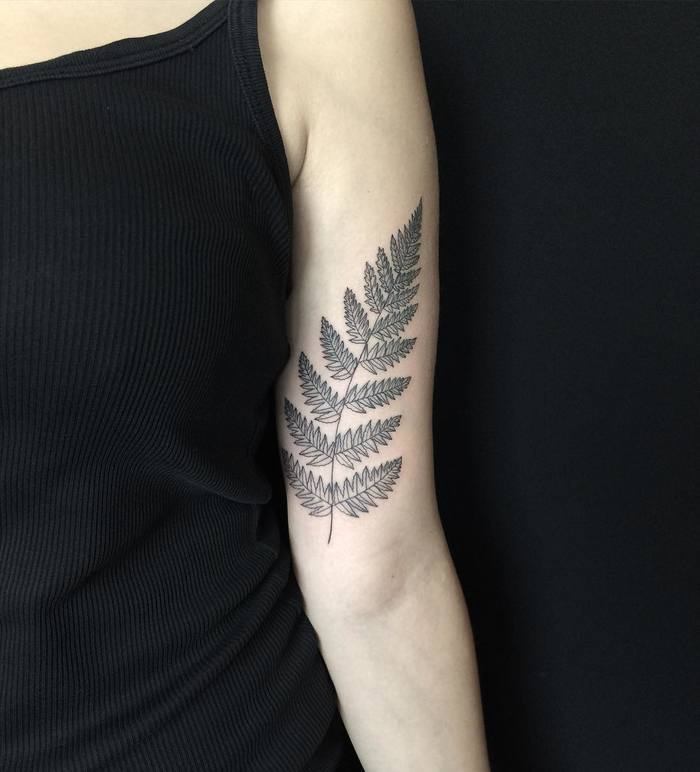 Fern Tattoo by mary_tereshchenko