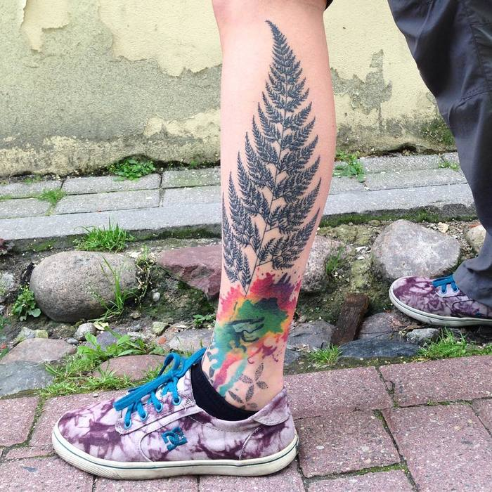Fern Tattoo by shnioka
