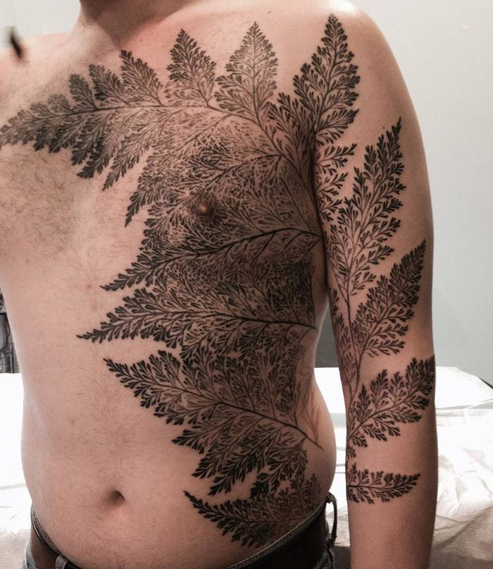 Fern Tattoo by butterstinker