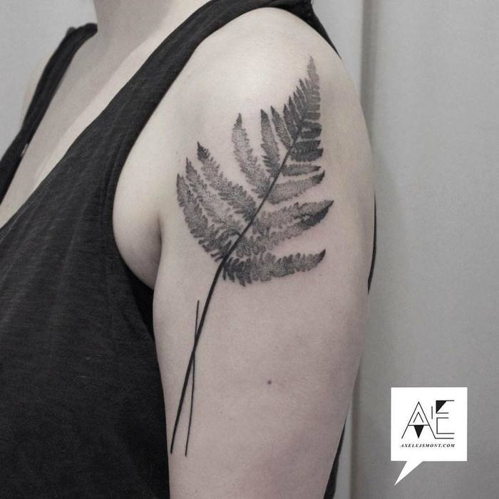 Fern Tattoo by axelejsmont