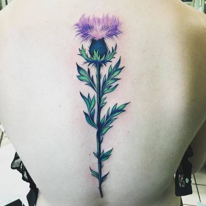Gorgeous Thistle on Spine by morganhabe