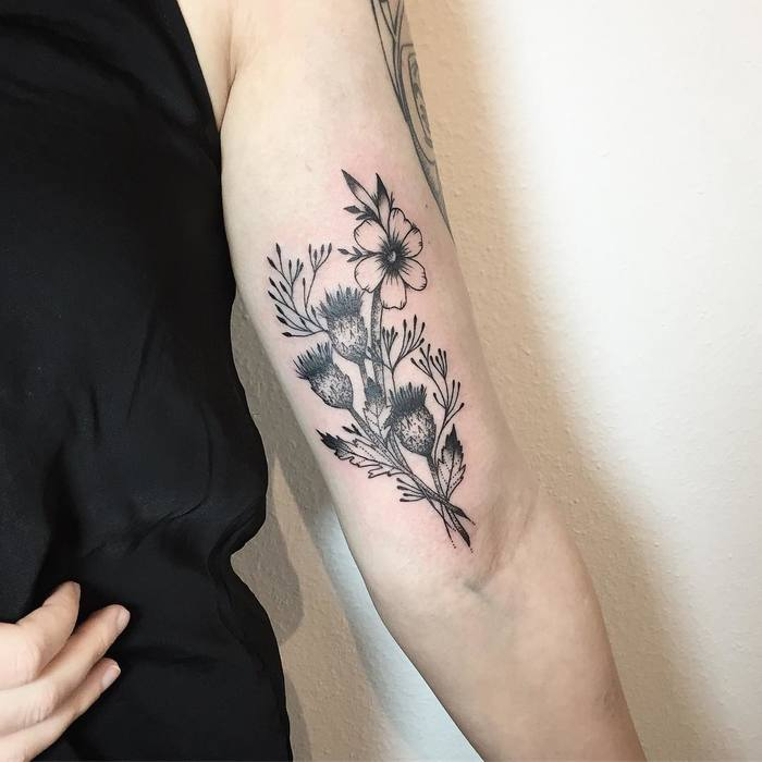 Dotwork Thistle Tattoo by nadel.tante