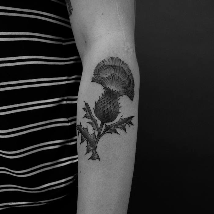 Black and Grey Thistle Tattoo by xlxvxr