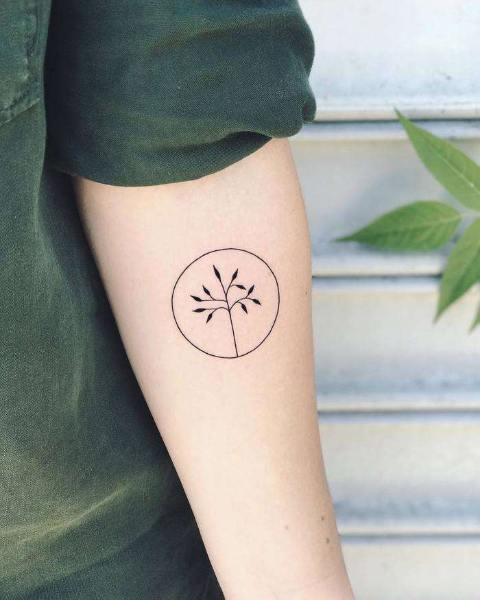 Minimalist Branch Tattoo in a Circle by nothingwildtattoo